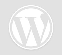 உலகின் மிகப்பெரிய சந்தை: சீனாவில் எலெக்ட்ரிக் கார் உற்பத்தியை தொடங்கும் டெஸ்லா